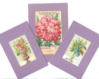 Antique Garden Flower Ephemera Seed Packet Lavender Matboard