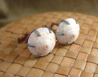 SALE:  Sundial Sea Shell Cuff Links - 60% Off