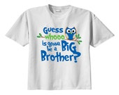 Owl - (blue) Guess Whoooo is gonna be a Big Brother T-shirt - Announce Pregnancy
