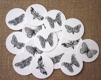 Moth Butterfly Tags Round Paper Gift Tags Set of 10