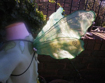 Green Dragonfly Fairy Wings, Beautiful, Iridescent, life-like and unique