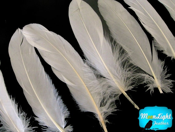 Ivory Goose Feathers, 1 pack - IVORY Goose Satinettes Loose feathers 0.3 oz. : 162