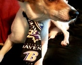Baltimore Ravens Cat or Small Dog Necktie Collar