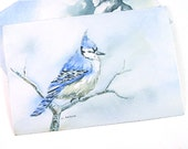 Blue Jay in Winter Original Watercolor - 6catsart Art Gallery Online