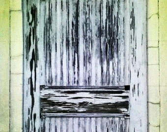 Savannah Door