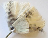 IVORY and GRIZZLY Rhinestone Peacock Hair Clip Sweet Bridal Bobby Pin