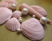 Fondant Seashells and Pearl cake topper or cupcake topper Beach wedding Ocean wedding edible decorations nautical party