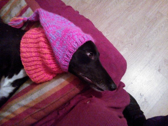 Knitting Patterns For Greyhound Dogs : Greyhound Tassel Hat knitting pattern