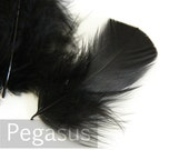 Black Turkey feathers (24 Pieces) economically priced feathers for wedding bouquet, shoe clip,  fascinators, boutonniere, earrings