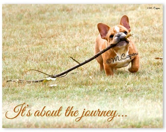 It's about the Journey - French Bulldog - Set of 2 Cards