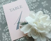 PRINTED Table Numbers in Elegant Style - 15 - Style TN4 - EDWARD COLLECTION