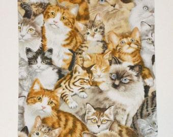 Cat and kitten Mousepad