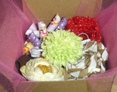 Hair Accessories Box of the Month