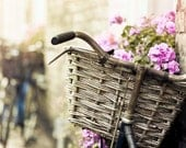 Shabby Chic Bicycle basket photograph- purple pink spring wall decor print- beige french country garden - Raceytay