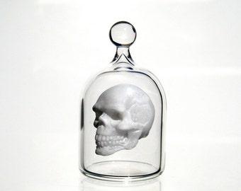 Miniature Skull in a Jar, Human Skull in Hand Blown Glass