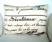 French Script Lumbar Pillow Cover, Decorative Throw Pillow, Cushion Covers, Village Blue Brown Natural Penmanship, One 12 x 16 or 12 x 18