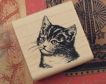 Realistic Kitten Cat Stamp (1.6 x 1.6in)