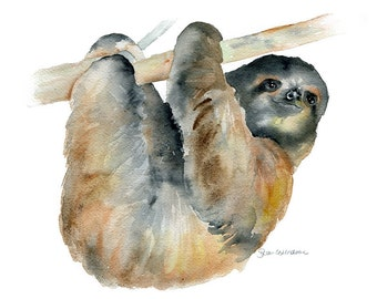 Sloth Watercolor Painting Giclee Print 14x11
