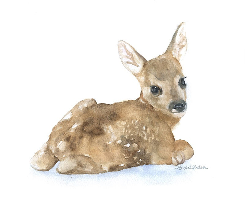 Watercolor Painting Deer Fawn Lying Down 10 X 8 11 X 8 5
