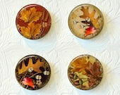 Magnet Set Fall Flowers and Leaves  Buy 3 Get 1 Free  116M