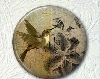 Pocket Mirror Hummingbird  Buy 3 get 1 Free 182