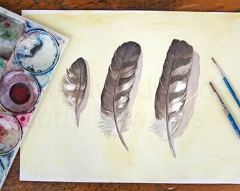 Cooper's Hawk Feathers Study - Large Watercolour Original