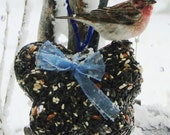 Wild Bird Seed Feeder One Pound Butterfly - Organic - Self hanging cake