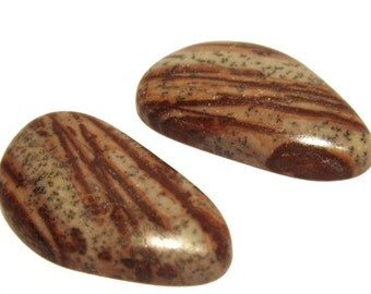 Plume Jasper Cabochons Earring Pair Cabochon set Free Form Petite Natural Gemstone Book Matched Designer Cabochon