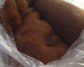 Alpaca carded fibre