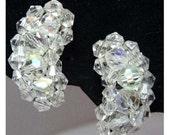 Kidney shaped Rhinestone Clip-On earrings Apparel & Accessories Jewelry Vintage Jewelry Earrings Clip On Earrings Rhinestone