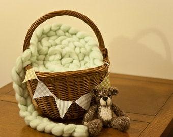 Photo prop 8ft merino wool plait- Peppermint