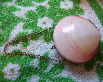 very old sea shell coin purse