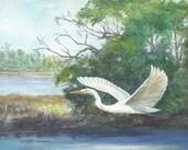 Print open edition 8 by 10 Florida bird bowman