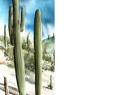 Saguaros - Original Watercolor Painting