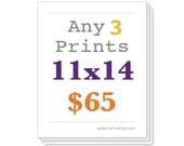 Any Three Prints 11x14