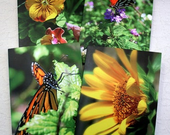 Photographic Print Note cards - set of 4 or single card