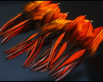 Craft Feathers Bright Orange Laced Feathers BLW American Rooster Saddle 1DOZEN
