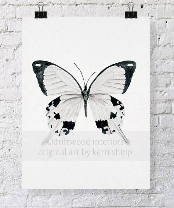Butterfly in Black and White 8x10 Watercolor Print - The Monarchist - Butterfly Art