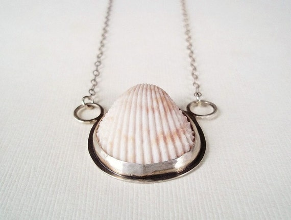 Shell Necklace. Beach Shell in Sterling Silver Necklace. Unique Jewelry