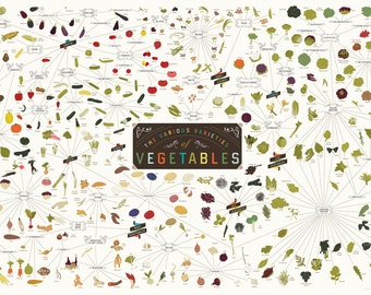 The Various Varieties of Vegetables Poster (39 x 27 Print)