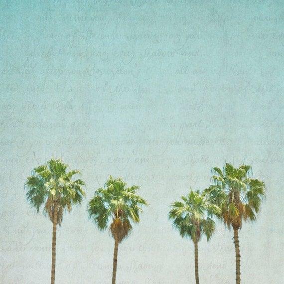 "California Photography - teal home decor, aqua decor, palm trees, LA style print - ""California Girls"" - 8x8 Fine Art Photograph"