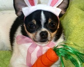 Doggy Bunny Ears - 6 Sizes, Machine Embroidery