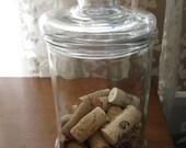Apothecary Jar  Terrarium Jar