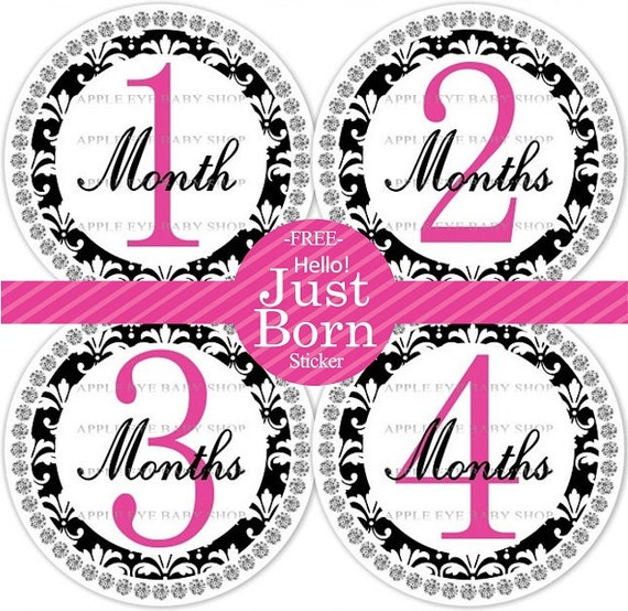 ON SALE Baby Monthly Stickers PLUS Just Born (1st year Damask Hot Pink, Black ) Milestone, Bodysuit, Photo prop, Baby Shower Gift