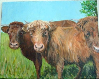 The Cow Posse Cows Field Highland Scottish 11x14 Original Acrylic Painting