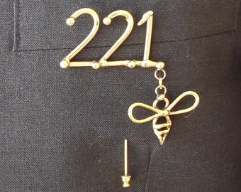 221b Pin