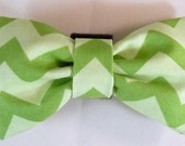 Dog Flower or Dog Bow Tie or Cat Flower or Cat Bow Tie  - Green Chevron - Free Shipping