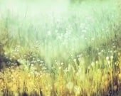 Abstract Landscape Photography, Field of Wildflowers, Impressionistic Wall Art, Aqua, Mint Gold, Meadow of White Flowers, 8x10 11x14 Print