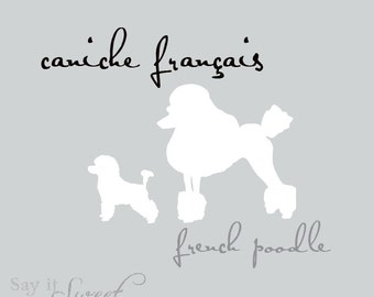 French Poodle (caniche français) Print, 8x10 Print (Silver Slate)  BUY 3 GET 1 FREE