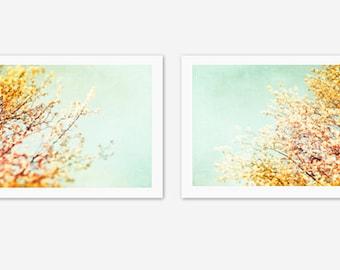 Photography Set - 2 two floral prints orange mint blue pastel teal aqua pale spring nature art yellow flower - 10x10, 8x10, 5x5 Photographs
